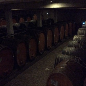 Olivier's cellar with a myriad of different sized old barrels